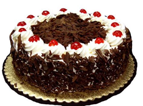 cake pictures gallery cakes eyl celebrate with high quality tasty