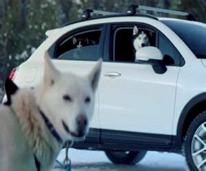 Song In Fiat 500 Commercial by Fiat 500x Crossover Commercial Song 2017 Sled