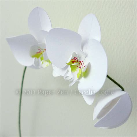 paper cutting card orchid template 3d paper orchid birthday card make the cut forum