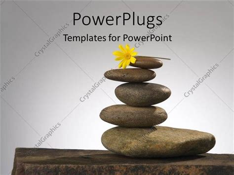 powerpoint templates zen powerpoint template a number of zen stones witha flower