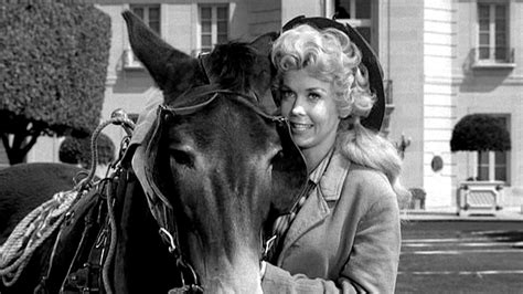 Beverly Dead beverly hillbillies donna douglas dead at 81 news