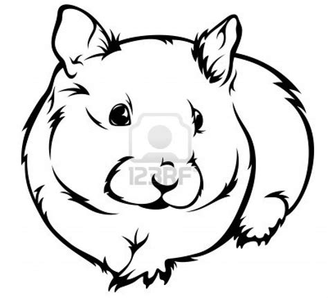 animals hamster 62087 png coloring page hamster in general