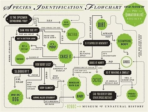 graphic design flowchart 55 best images about quizzes on
