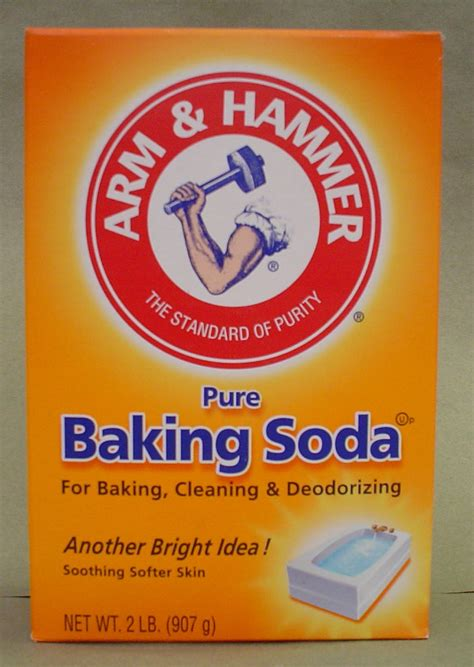 does baking soda kill bed bugs how to clean your bed and get rid off bed bugs trusper