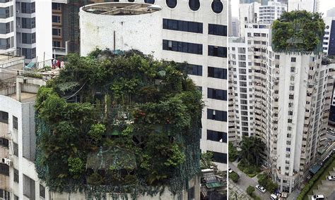 10 floors building plant landlord constructs illegal floors on top of his