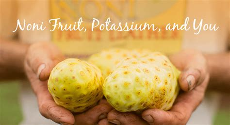 fruit with potassium noni fruit potassium and you