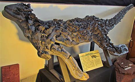 scelidosaurus wikipedia
