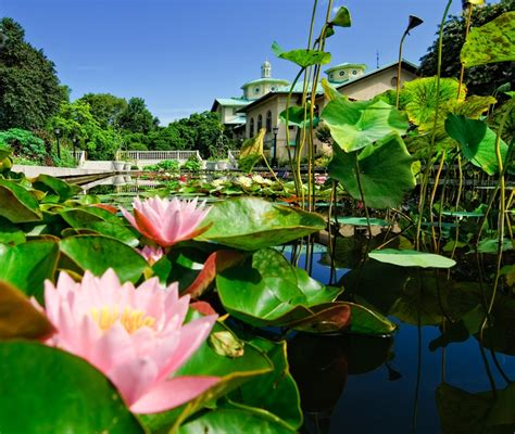 Terrace Botanical Gardens The 11 Best Botanical Gardens In The United States Curbed