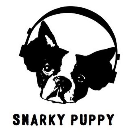 what about me snarky puppy snarky puppy