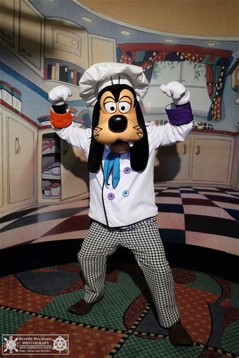 goofy s 17 best images about goofy on pinterest disney donald o