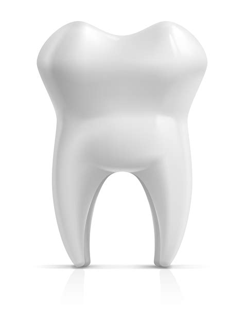 Intructions Before Tooth Extraction Procedures