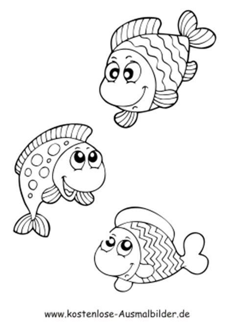 Sticker Papier Für Drucker by Ausmalbild Fische 1048 Malvorlage Fische Ausmalbilder