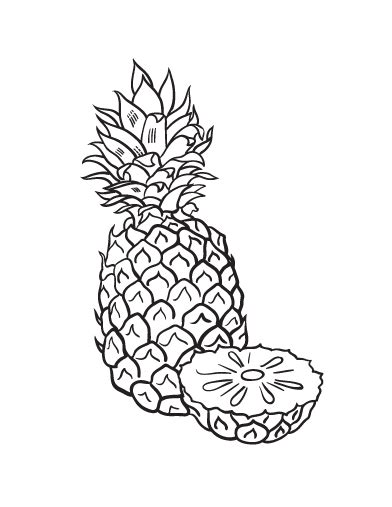 pineapple coloring page pineapple coloring pages getcoloringpages