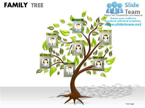 Family Tree Powerpoint Presentation Slides Ppt Templates Powerpoint Templates Size Of Slides
