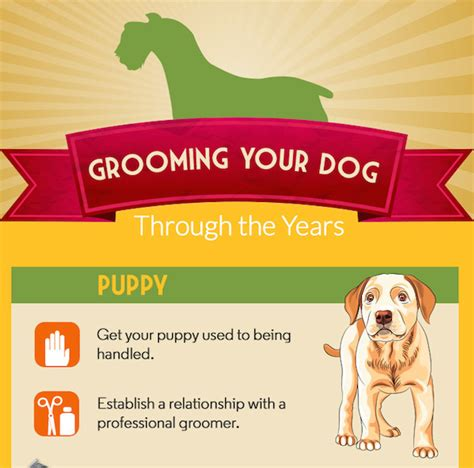 Redeem Gift Cards For Cash Near Me - dog grooming gift ideas gift ftempo