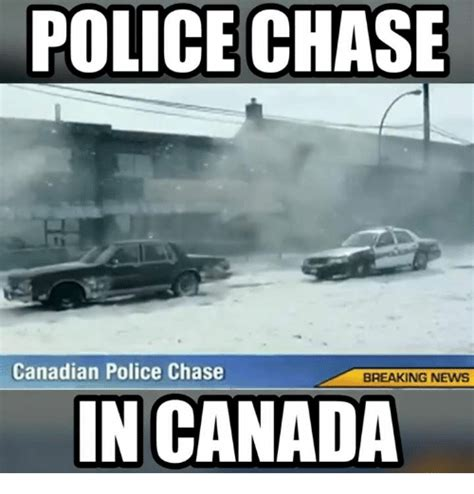 canada news all the latest and breaking canadian news funny canada memes of 2017 on sizzle canada day meme