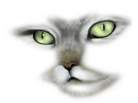 imagenes de animales en 3d fascinerad ken f 246 r livet