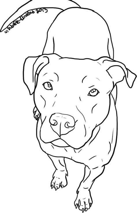 coloring pages pitbull puppies free pit bull line art 14 by wolfie undead puppy love