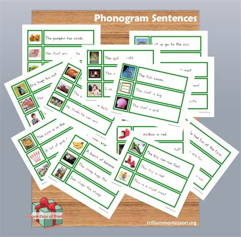 printable montessori sound book free montessori printable phonogram sentences style
