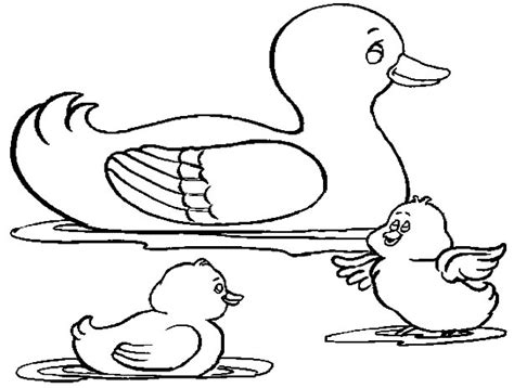 Duck Coloring Pages Free Coloring Pages Of Oregon Ducks by Duck Coloring Pages