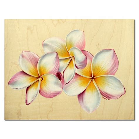 108 best frangipani tattoo s images on pinterest tattoo