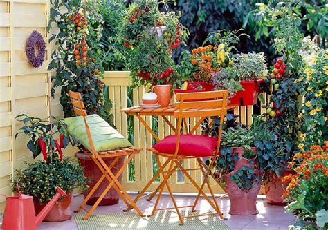 arredare un terrazzo con piante e fiori beautiful arredare un terrazzo con piante e fiori photos