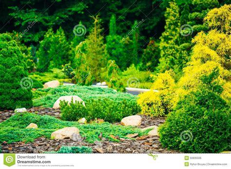 Garden Landscaping Design. Flower Bed, Green Trees Stock