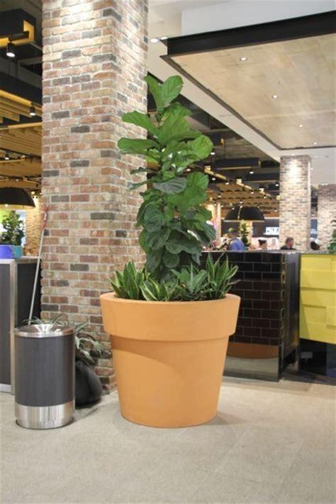 quatro design planters planter boxes grc