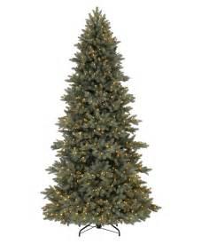 majestic blue spruce christmas tree tree classics