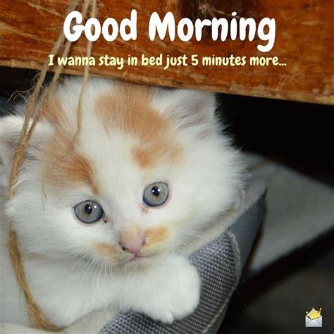 Cute Good Morning Meme - cute good morning sunshine meme www pixshark com