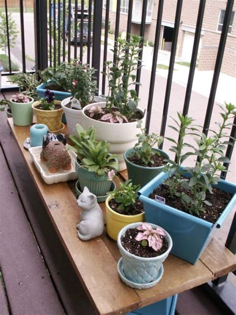 Apartment Deck Plants Small Plants Apartment Patio Garden Ideas 630
