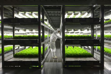 indoor farms   step   evolution