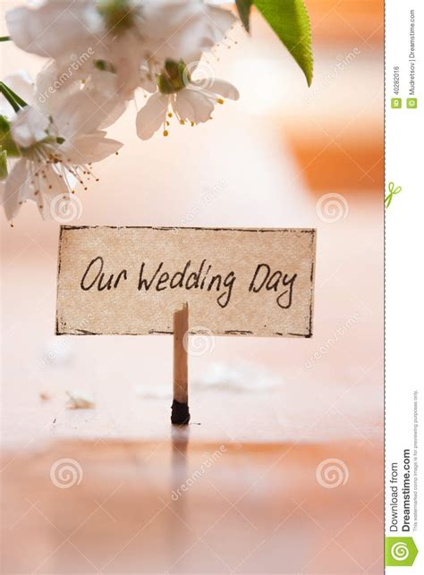 Our Wedding Photos by Our Wedding Day Stock Photo Image 40282016