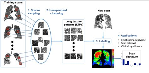 pattern recognition unsupervised learning adaptive quantification and subtyping of pulmonary