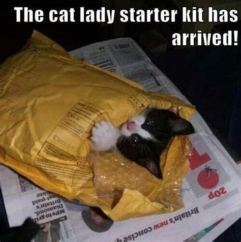Crazy Dog Lady Meme - 144 best images about funny animals d on pinterest
