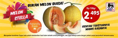 Melon Stella indo lebih segar lebih hemat lebih dekat