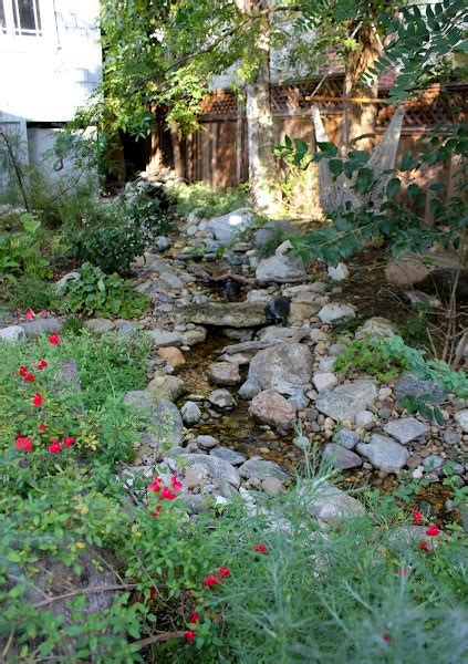 backyard stream ideas 1000 ideas about backyard stream on pinterest garden