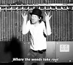 Thom Yorke Lotus Flower Site Unavailable