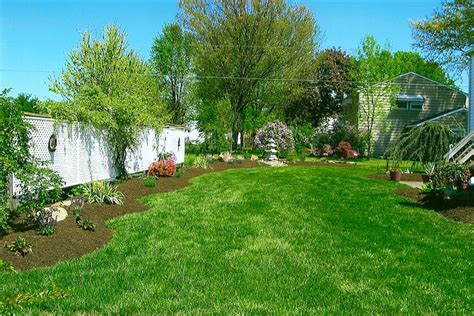 backyard trees and shrubs j c pryor landscaping mulch trees and shrubs hanover pa