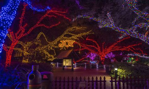 Zoo Lights Is Back At The Houston Zoo With 2 Million Lights At Houston Zoo