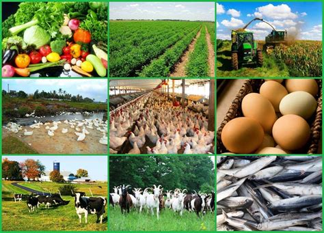 small farming business ideas business ideas small business ideas how to start