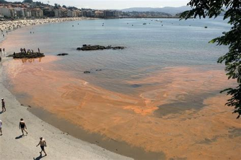 imagenes de mareas rojas fenomenos naturales taringa