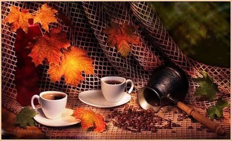 coffee autumn wallpaper autumn coffee photography abstract background
