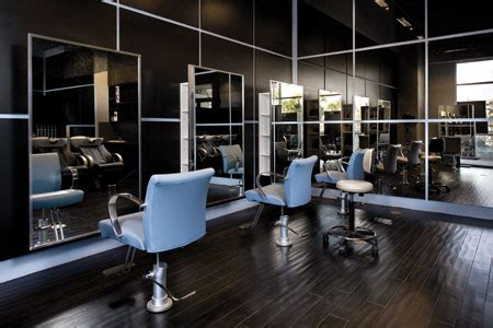 salons of the year 2009: judges & process salon