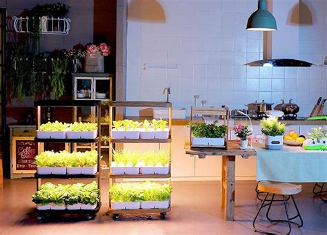 smart  eco kitchen home gardening indoor farming