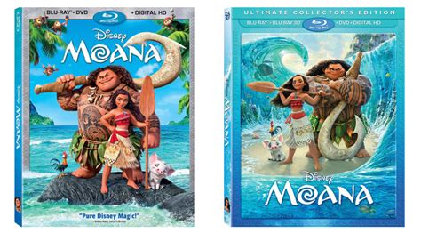 film moana release date disney announces quot moana quot blu ray release date and cover