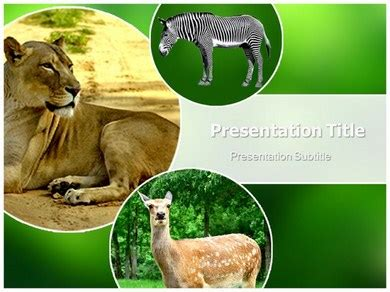 top 10 animal ppt templates download free ppt templates
