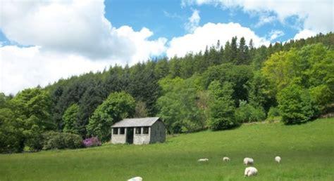 four seasons at the hafod estate pontrhydygroes baldhiker