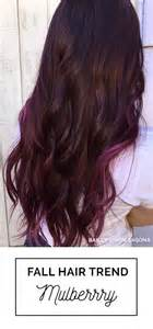 mulberry hair color 1000 images about hair on updo hair and