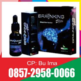 Brainking Plus Resmi brainking plus asli